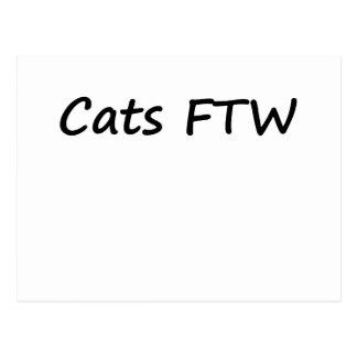Cats FTW Postcard