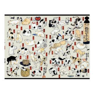 Cats Galore Postcard