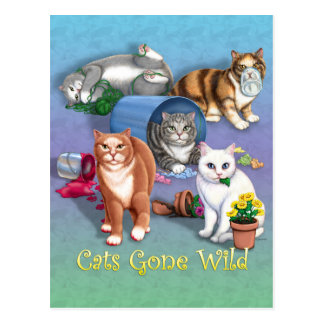Cats Gone Wild Postcard