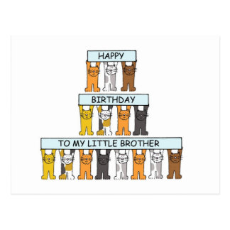 Cats happy  birthday little brother. post card