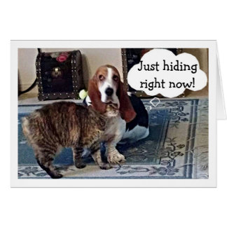 CATS HIDES BEHIND BASSET HOUND-BIRTHDAY WISHES GREETING CARD