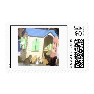 Cat's house postage
