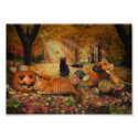 Cats in Autumn Print