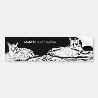 Cats in Black and White Bumper Sticker