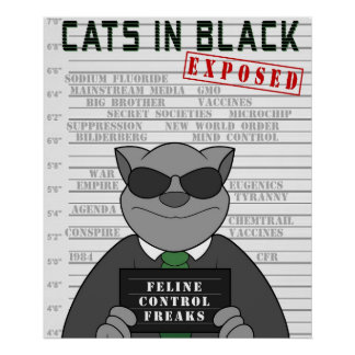 Cats In Black Exposed Poster