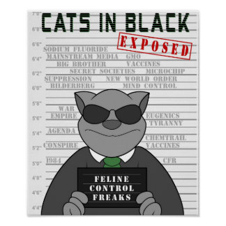 Cats In Black Poster Design 2