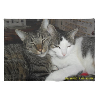cats in love cloth placemat