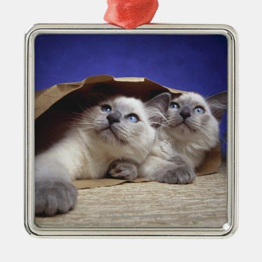 Cats in paper bag metal ornament