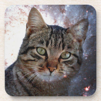 Cats in Space Beverage Coaster