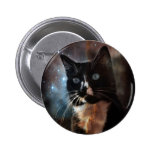 Cats in space pinback buttons