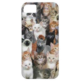 Cats iPhone SE/5/5s Case