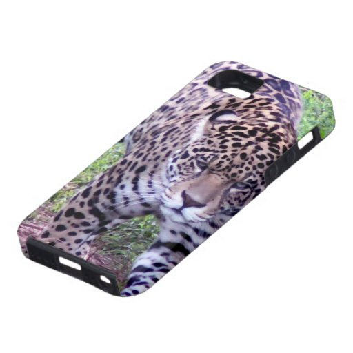 Cats Jaguar Safari Jungle Destiny Nature Peace iPhone 5 Cases