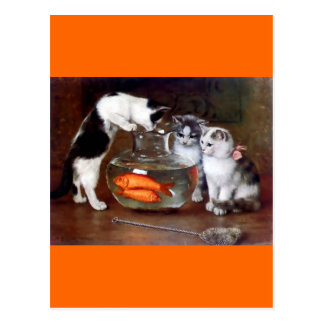 Cats Kittens Fishing in a Fish Bowl painting Postcard