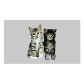 Cats Kittens Twosome Business Card