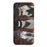 Cats/Kitties in Black Case For iPhone 5