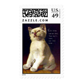 Cats know How we feel Stamps