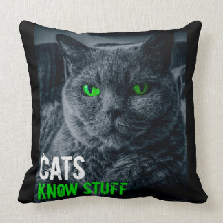 Cats Know Stuff Throw Pillow
