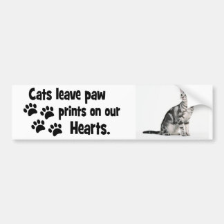cats leave footprints on our hearts bumper sticker