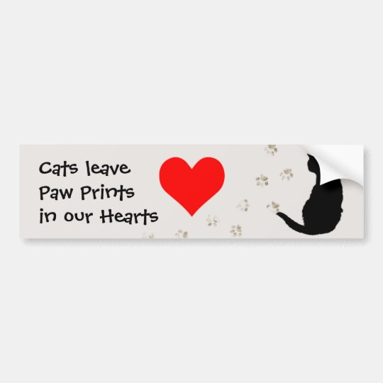 Cats leave paw-prints in our hearts bumper sticker