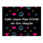 Cats Leave Paw Prints on Our Hearts Postcard