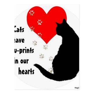 cats_leave_pawprints2.jpg postcard
