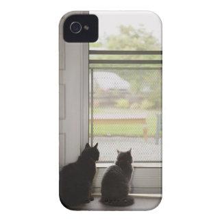 Cats looking out screen door iPhone 4 case