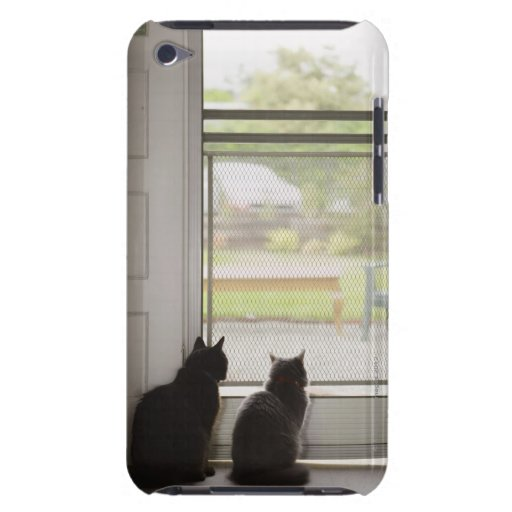 Cats looking out screen door iPod touch cover