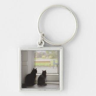 Cats looking out screen door keychain