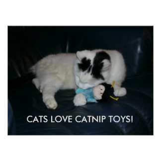 CATS LOVE CATNIP TOYS! POSTER