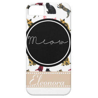 Cats Meow iPhone SE/5/5s Case