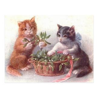 Cats & Mistletoe Postcard