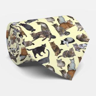 Cats Neck Tie