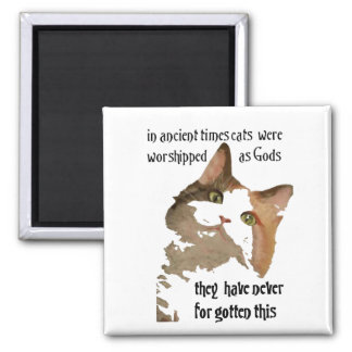 Cats Never Forget 2 Inch Square Magnet