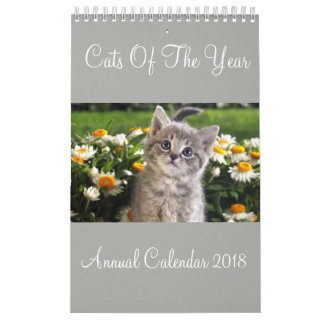 Cats Of The Year Annual Calendar 2018