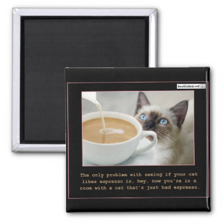 Cats On Espresso Magnet
