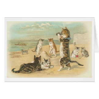 """Cats on the Beach "" Vintage Greeting Card"