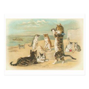 """Beach Themed """"Cats on the Beach """" Vintage Postcard"""