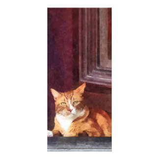 Cats - Orange Tabby in Doorway Rack Card