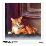 Cats - Orange Tabby in Doorway Room Graphics