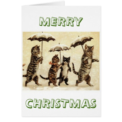 Cats parade card
