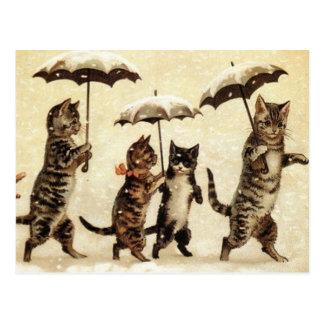 Cats parade postcard