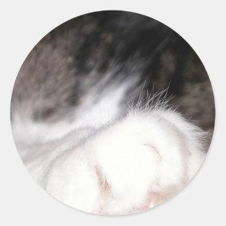 Cat's Paw Classic Round Sticker