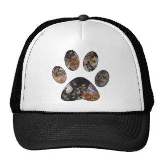 Cats Paw Trucker Hat