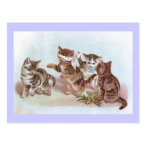 Cats Play Blind Man's Bluff Victorian Trade Card Postcards