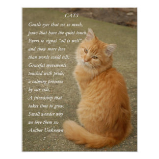 Cats Poem Cute Orange Ginger Kitty Cat Poster