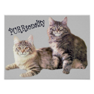 Cats Poster PURRsonality
