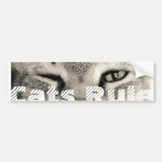 Cats Rule Bumper Sticker