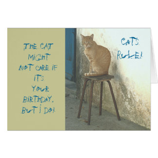 """""""CATS RULE/CAT PERCHED ON STOOL"""" HUMOROUS BIRTHDAY CARD"""