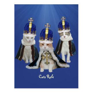 Cats Rule Postcard