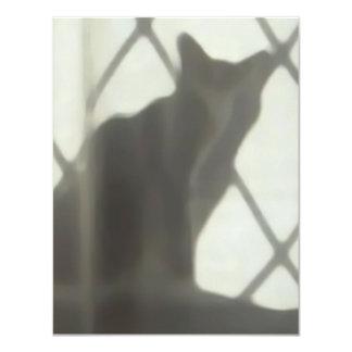 Cat's shadow in window card